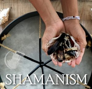 a picture of a hand holding different rocks on a shell over a drum under the hand